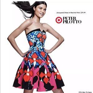Peter Pilotto Gorgeous Holiday Dress Size 6
